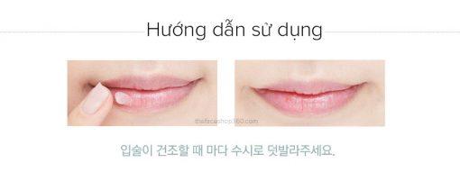 son-duong-tfs-lip-care-cream-13